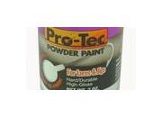 Pro-Tec Powder Paint - 2oz